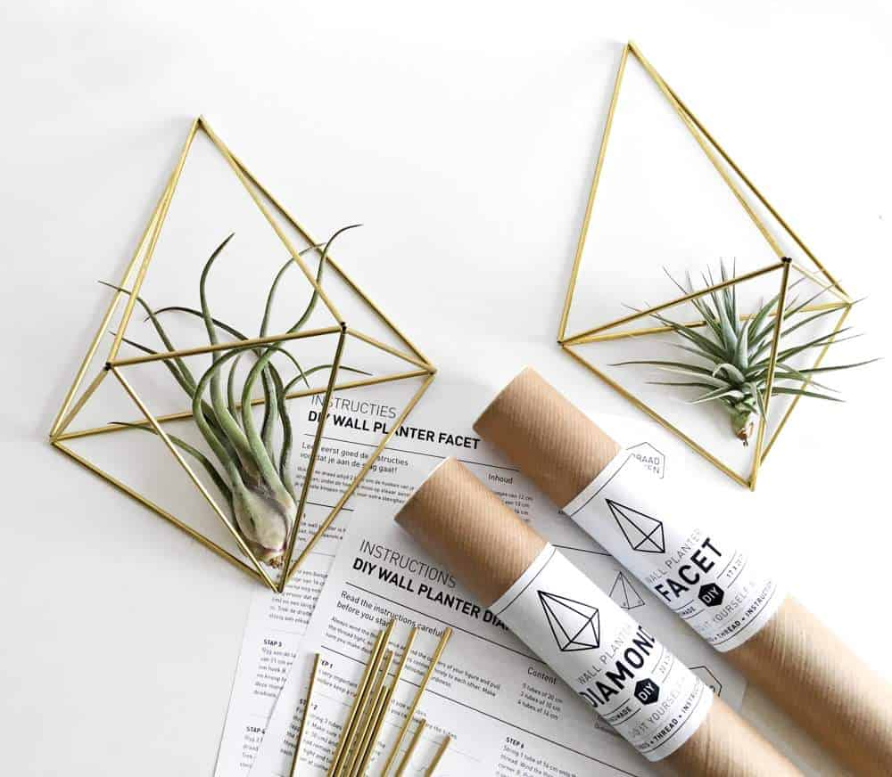 De himmelis en wallplanter facet van draadzaken maken jouw interieur helemaal af, plaats er een mooi luchtplantje in en geniet!   www.homeseeds.nl   #tillandsia #himmeli #interieur #huis