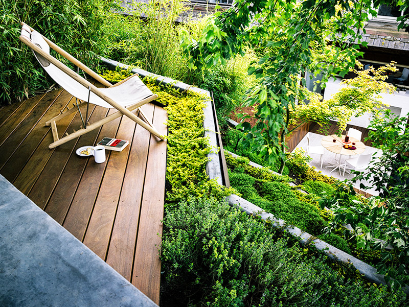 Backyard Landscaping Ideas Hilgard Garden by Mary Barensfeld Architecture HOMESTHETICS 8 Small Backyard Landscaping Ideas Hilgard Garden by Mary Barensfeld Architecture