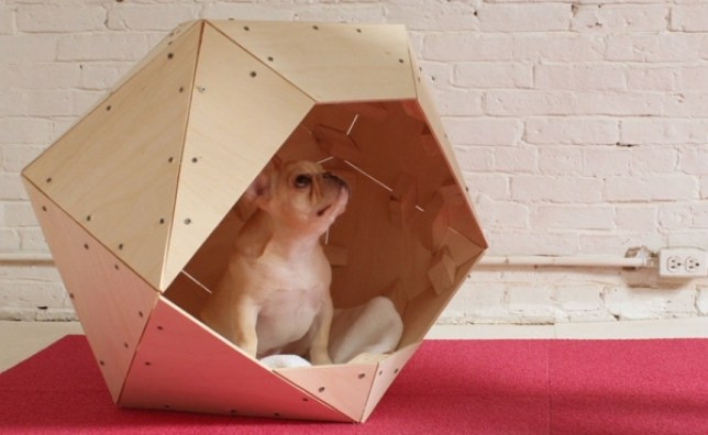 How to get a puppy apartment crate