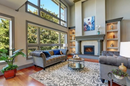 601 Examples of Living Rooms with Area Rugs  Photos
