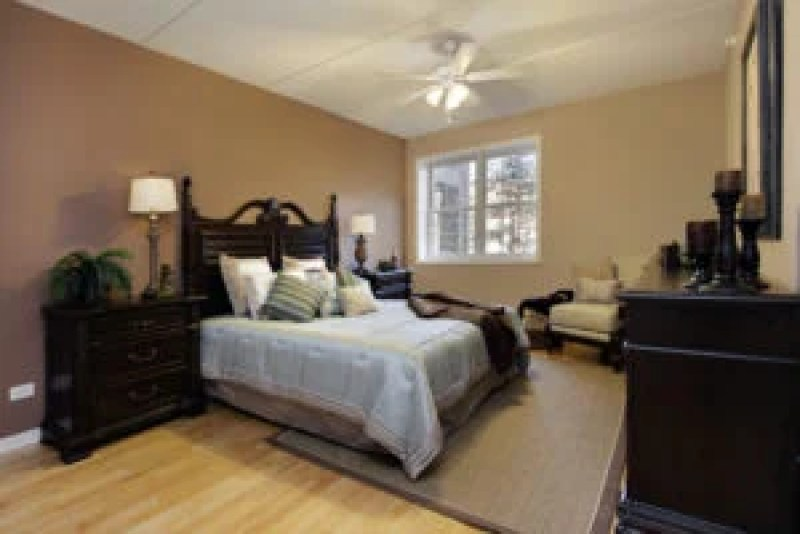 Fresh master bedroom with light wood floors, dark wood furniture and dark brown walls.