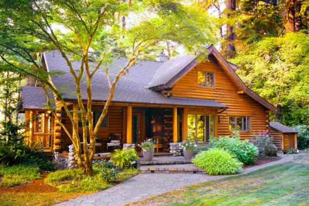 Suburban style log home with front porch set among trees with walkway to front door.