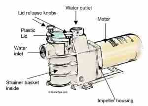 Swimming Pool Pump Buying Guide