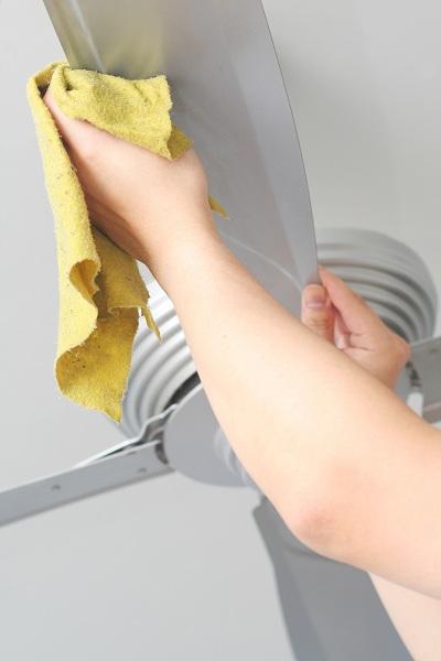 Cleaning Fan