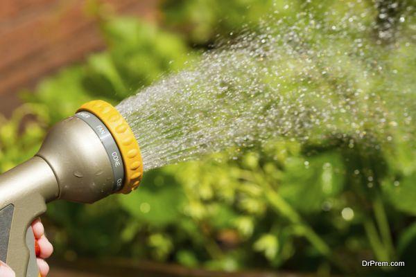 Adjustable water sprayer