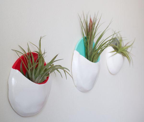 plant-pockets
