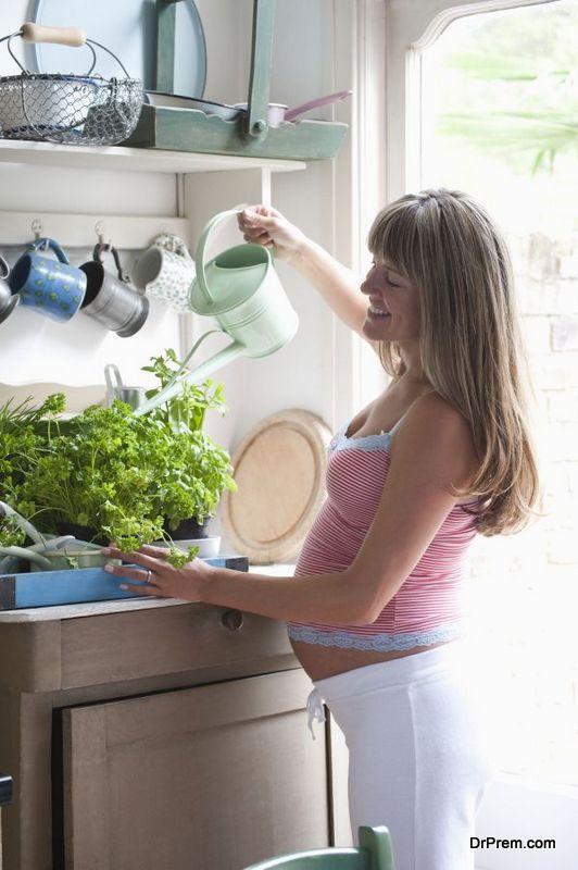 keeping-houseplants-healthy-3