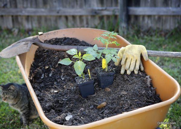 having-compost-ready-4