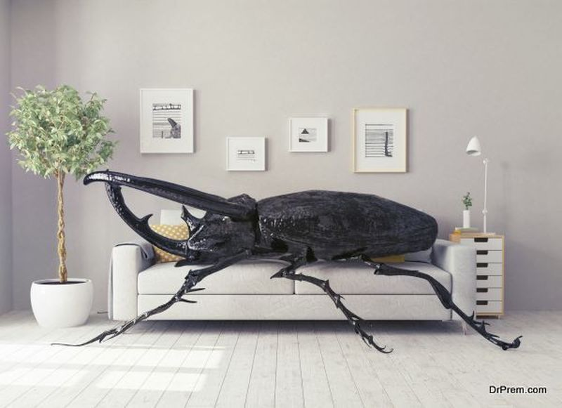 Pests-Carrying-Diseases