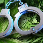 Drug warrant at grow operation results in charges