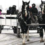Carleton Place Winter Carnival