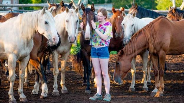 horse-fundraiser-web