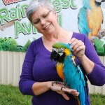 Carleton Place to become new home to parrot training centre
