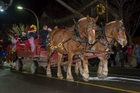 SF Santa Parade Dec 09 085