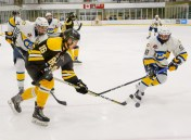 Bears_Hockey_Nov_09 059