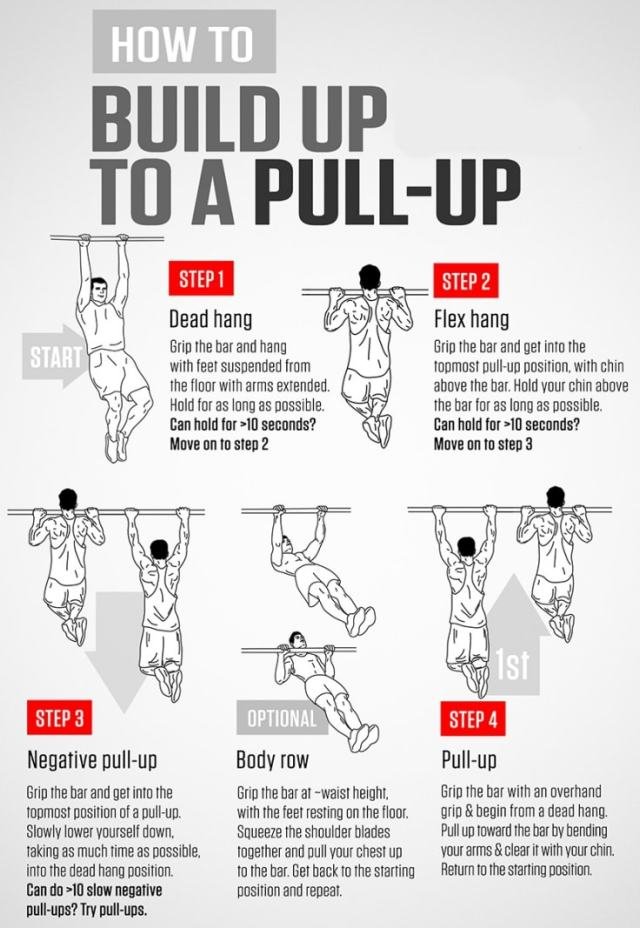 Pull Up Bar Workouts For Beginners