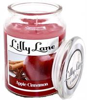Lilly Lane Apple Cinammon Scented Candle Large Lidded Mason