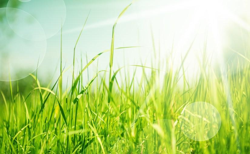 Les crèmes solaires ne protègent pas contre le mélanome