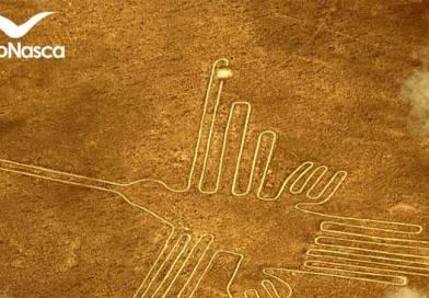 Sobrevuelo a las Líneas de Nazca: Actividad Perfecta para Mochileros en Perú