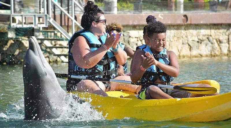 Nadar con delfines Riviera Maya