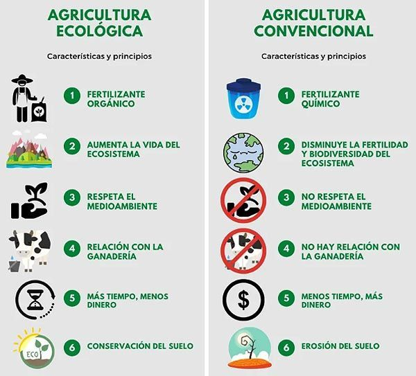 Diferencias agricultura ecológica tradicional