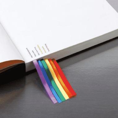 diccionario-lésbico-portada-Homosensual