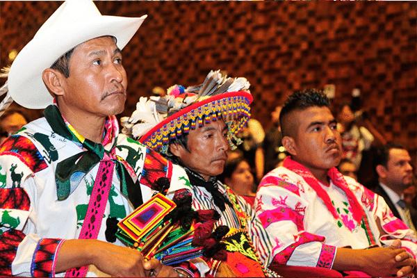 Indígena-lgbt