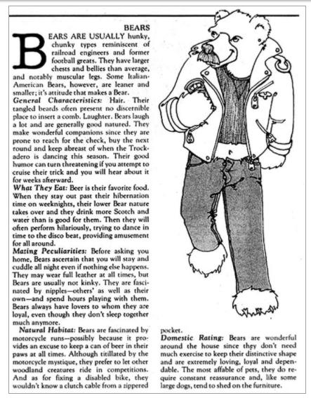 Este artículo explicaba por qué se les decía osos en la comunidad gay.