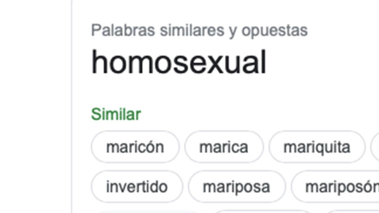 Google comparte este tipo de palabras como sinónimo de homosexual.