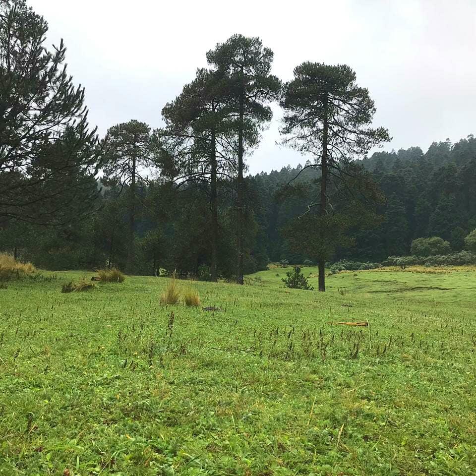 Parque Ejidal San Nicolás Totolapan, CDMX