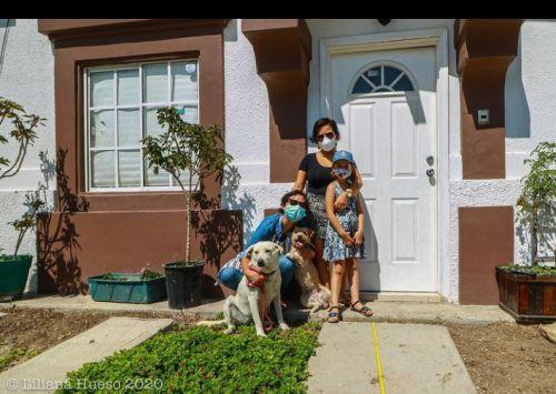 familia lesbomaternal homoparental perros
