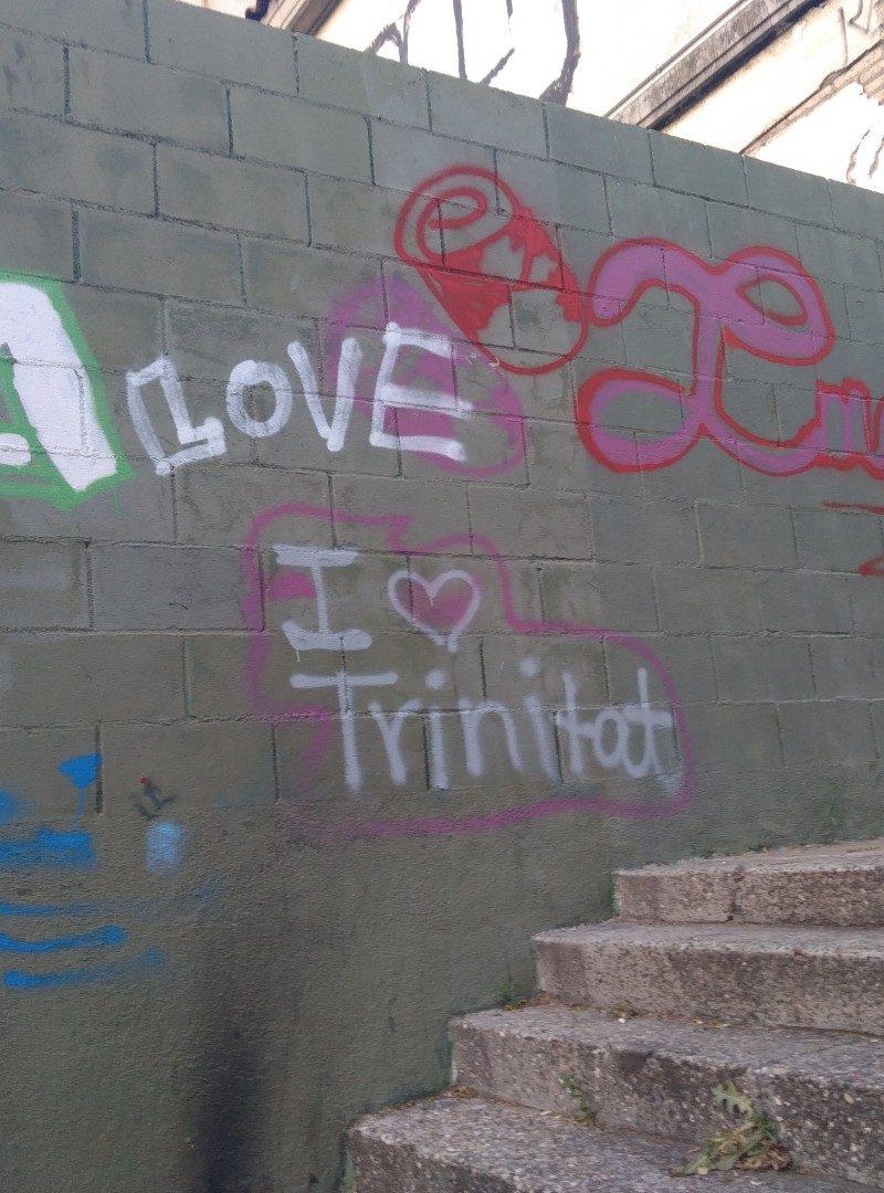 Propuestas para una mejora ultrarracional de Trinitat Vella
