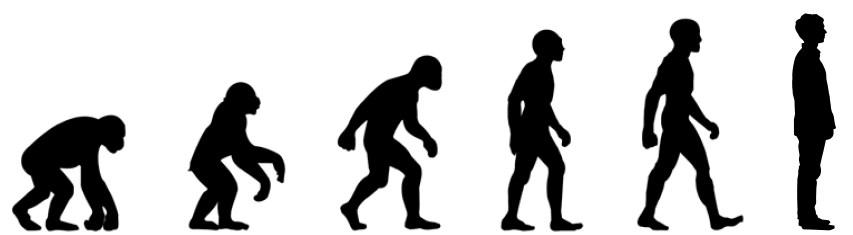 evolucion - Homo velamine