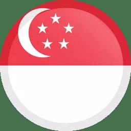 Singapore-Icon-256 – Homz N Space