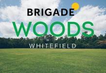Brigade Woods Main A Homz N Space