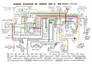 Honda305 Forum :: View topic  wiring harness help