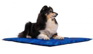 Hond op Trendpet arctic-comfort koelmat maat M