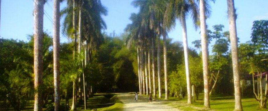 jardin-botanico-lancetilla-tela