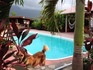hotels west of La Ceiba