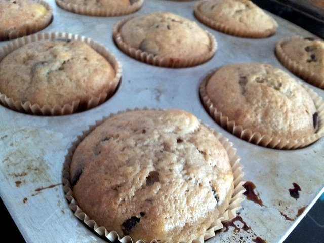 Banana chip muffins in the pan