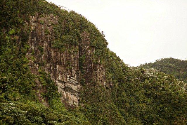 Mountains in El Yunque