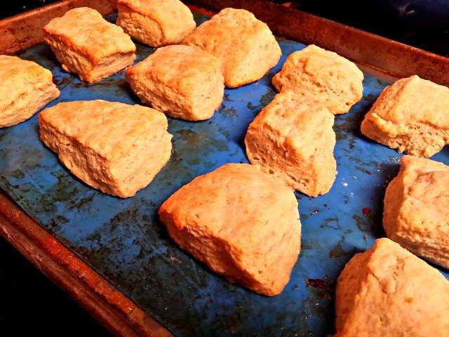 Biscuits fresh from the oven