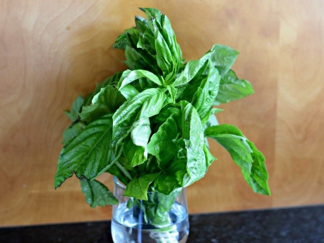 Store basil in a small jar of water