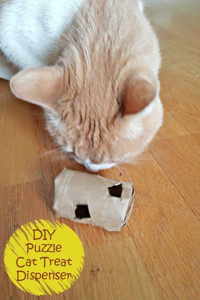 Easy Upcycled DIY Cat Treat Dispenser Tutorial