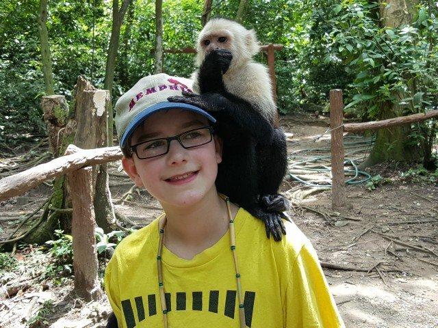 Enjoy a monkey climbing on you