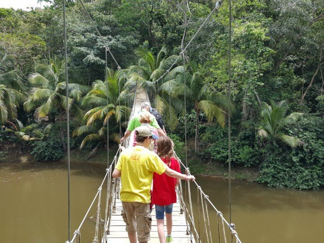 Walking across the bridge to the monkeys and birds