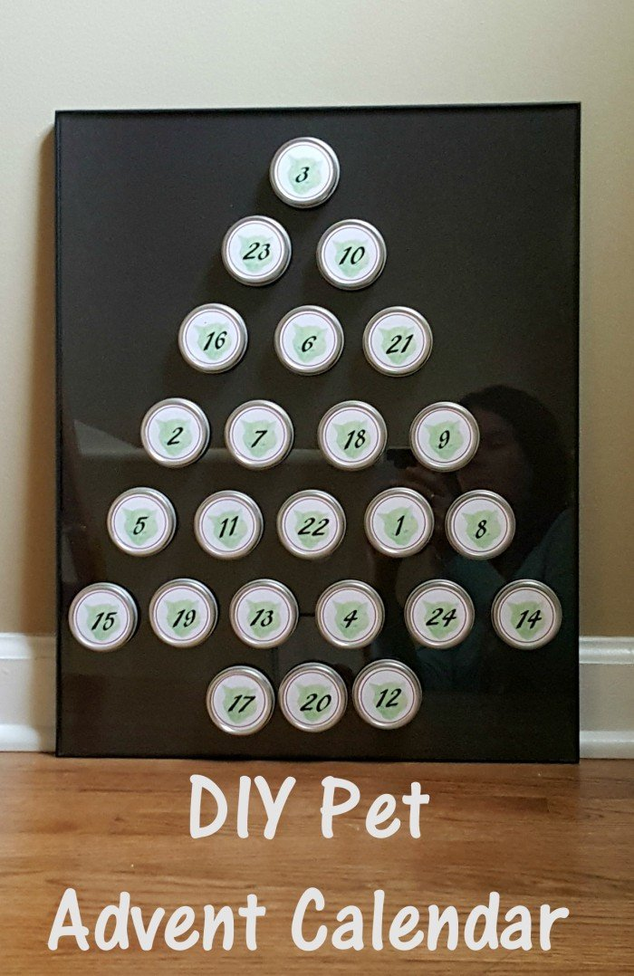 Diy Reusable Advent Calendar : Diy pet advent calendar honest and truly