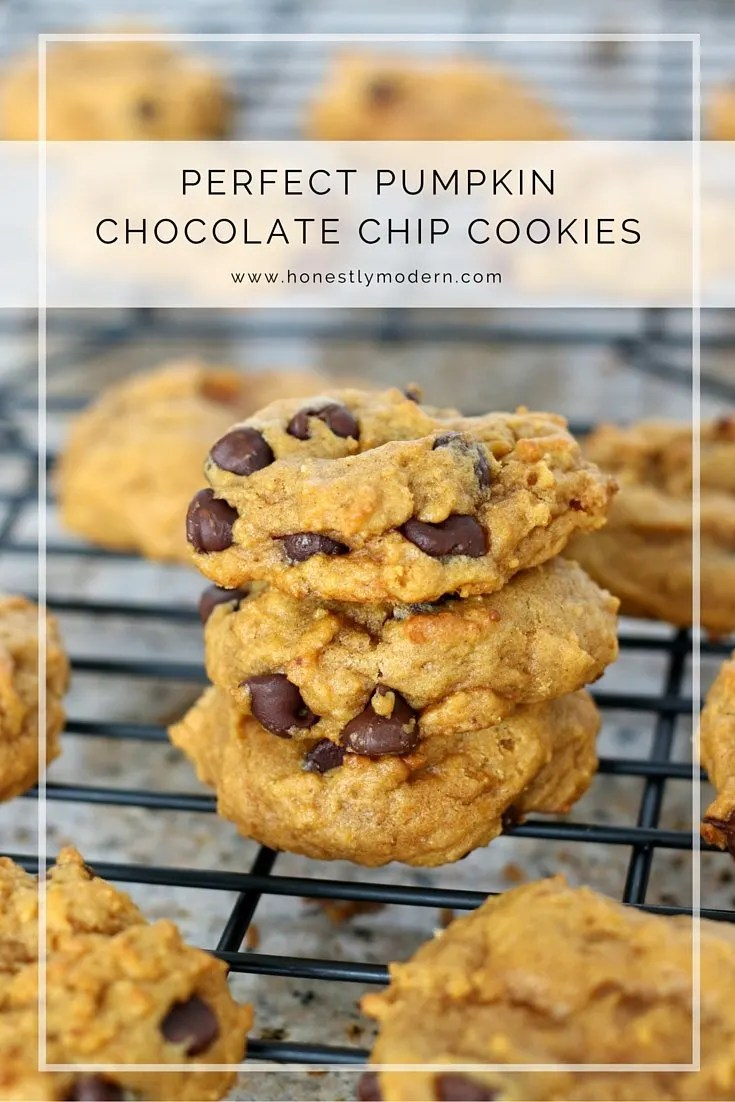 Soft and moist pumpkin chocolate chip cookies that everyone will love. You can't pass these up!