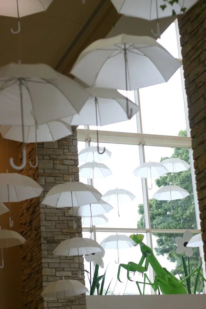 umbrellas hanging from the ceiling at the Nature Museum