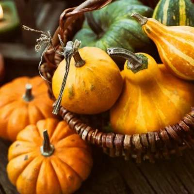 Simple Steps Toward a Zero Waste Thanksgiving